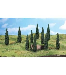5 Árboles CIPRESES (12-14cm). Ref: 1191. HEKI. H0
